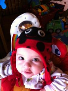 Ladybug Leila